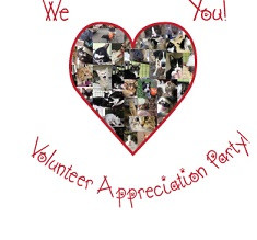 We LOVE our IMHS Volunteers Appreciation Party!