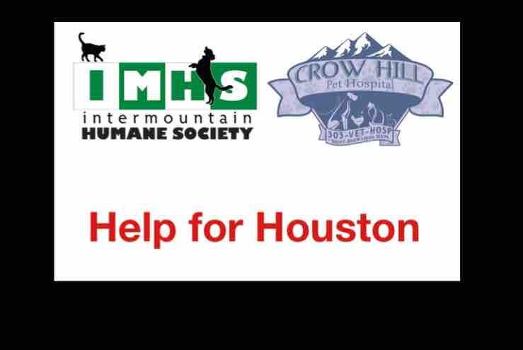 Help for Houston | IMHS | Crow Hill Pet Hospital