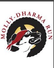 IMHS at the annual Molly Dharma Run