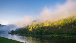 Les droits de la Nature dans l'agenda politique suisse
