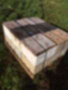 picture of Italian honey bees hanging out at hive entrance