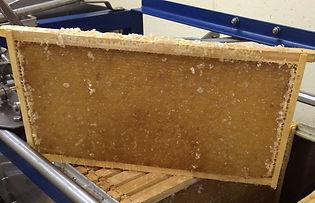 picture of bottled honey