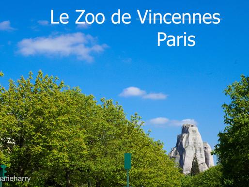 Un nouveau zoo