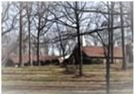 picture of present church and woods.jpg