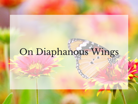 On Diaphanous Wings
