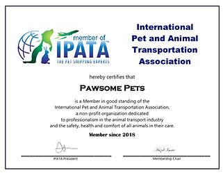 IPATA certificate.jpeg