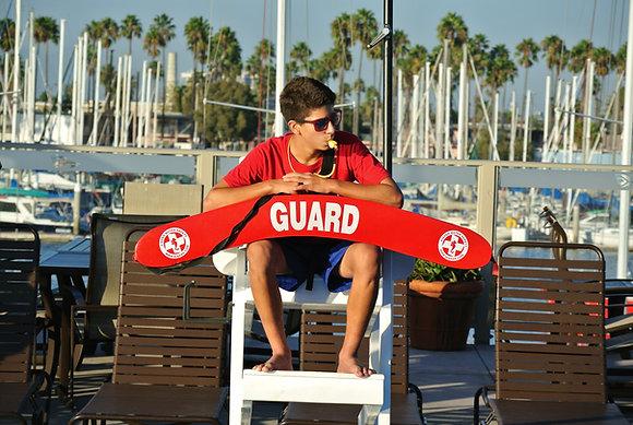 Ultimate Lifeguard