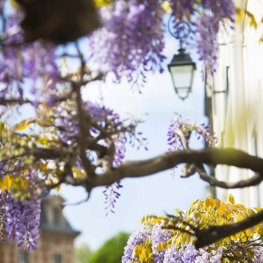 charenton-le-pont ambiance de printemps-