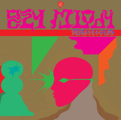 Album Review: The Flaming Lips - Oczy Mlody