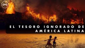 Por qué no hay futuro sin el Amazonas y como salvarlo