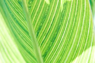 colours 3.jpg