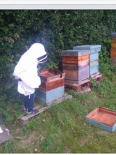 Marcus, age 8, checking the hives