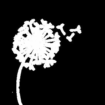 Dandelion White Logo | Logo | Wendy Mann Equip | Christian speaker, Christian Author, supernatural ministries and Christian courses, Christian living naturally supernatural, Christian woman leader, Women in church
