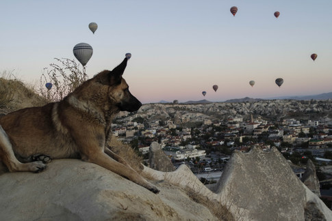 Cappadocia 2019