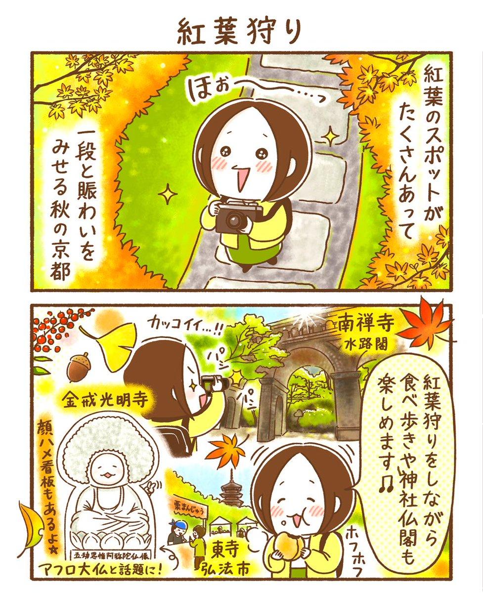 【隔週連載❖シロさんのゆる〜り京都だより】第7回「紅葉狩り」