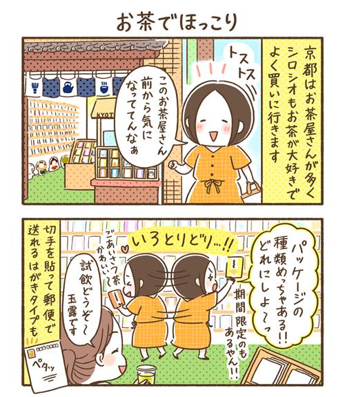 【隔週連載❖シロさんのゆる〜り京都だより】第5回「お茶でほっこり」