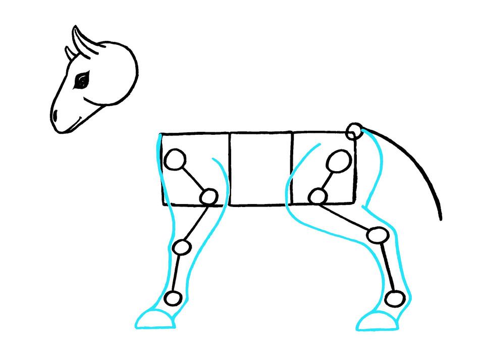 Cheval, étape 5, jambes.jpg