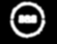SAS_logo white.png