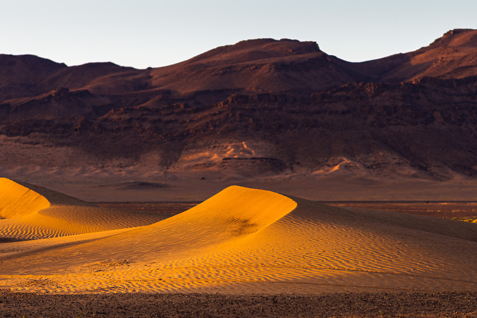 Yellow sand dunes
