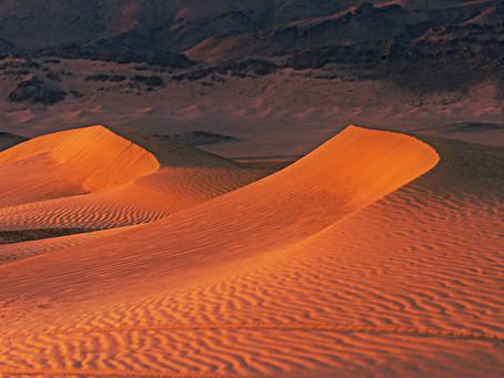 Burnt in Sahara