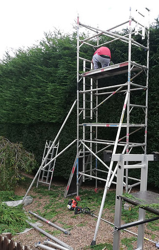 High-hedge-cutting-and-trimming-work-wit