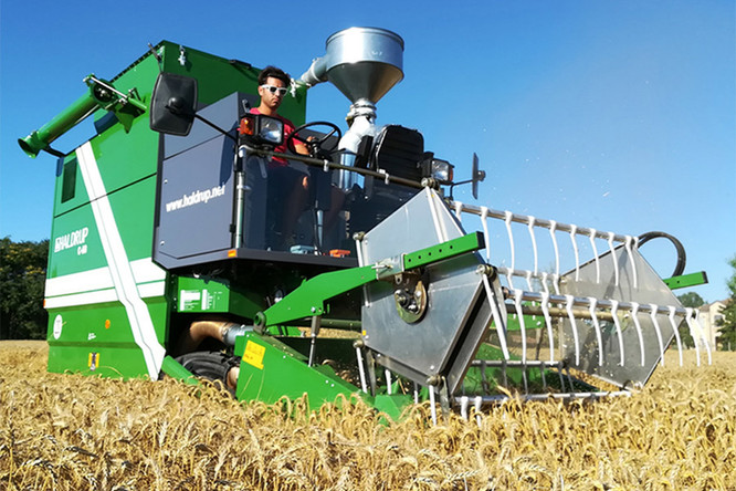 Haldrup-harvester-c65-wa-CNE.jpg