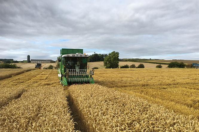 Haldrup-harvester-c85-perth-wa.jpg