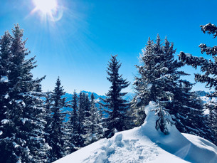 Snowshoeing in a Fairytale Forest