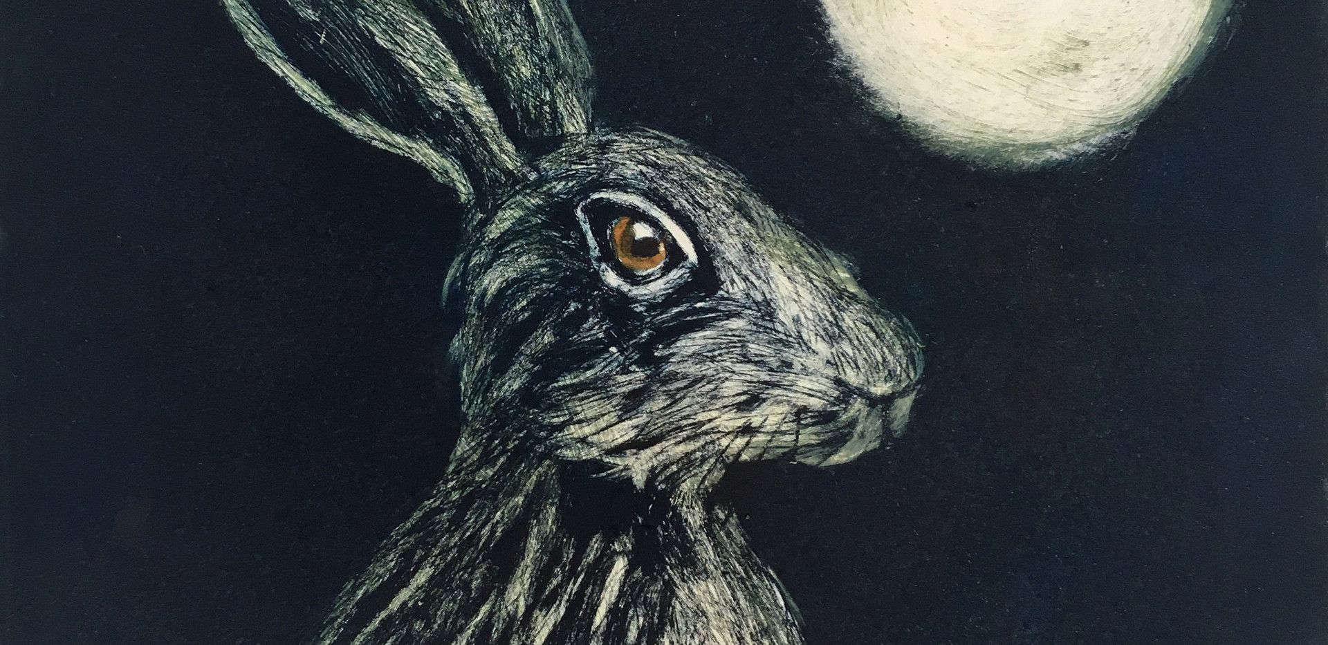 Hare in the Moonlight
