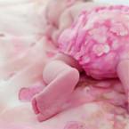 Rózsaszirom popsi.jpg