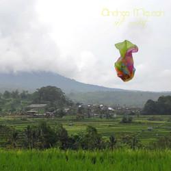 rizs1