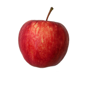 apple%20png_edited.png