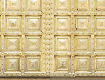 jaipur gold door .jpeg