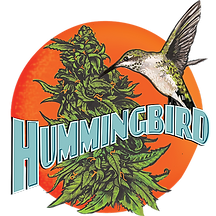 hummingbird_logo copy.png