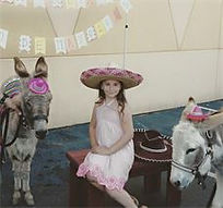 Darby with Donkey - Cinco de mayo.jpg