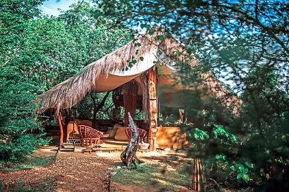 safari lodge.jpg