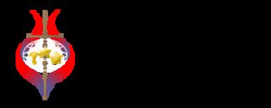 Web-Logo-2-300x120536.png
