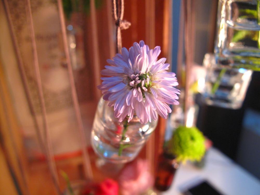 Flores no colar 003.jpg