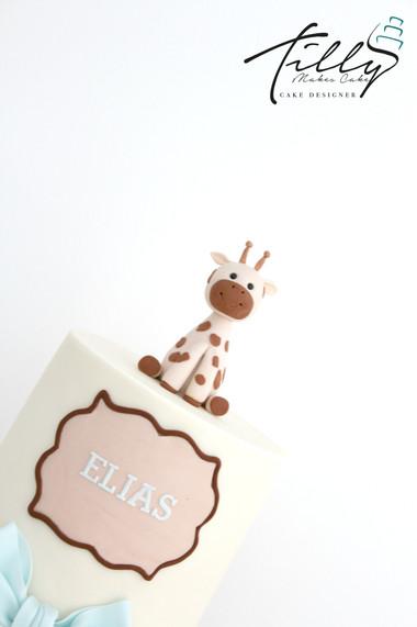 elias3.jpg