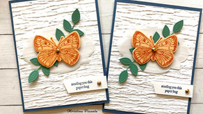 Clean + Simple Card:  Butterfly Brilliance