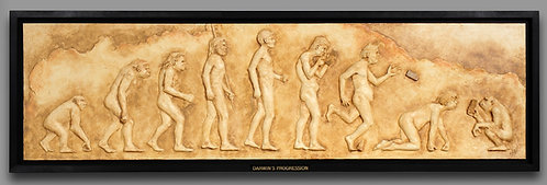 Darwin's Progression
