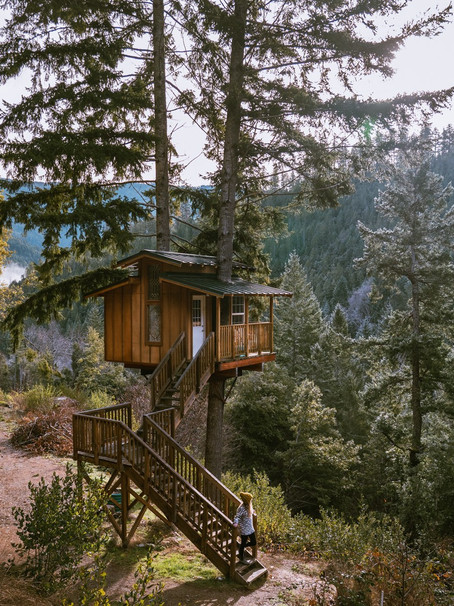 20 Pacific Northwest Treehouses to Rent Now