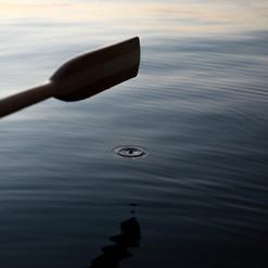 Orcas Faves--5.jpg