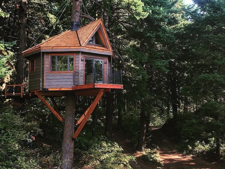 Osprey Treehouse Skamania Cove: 20 Pacific Northwest Treehouses to Rent Now
