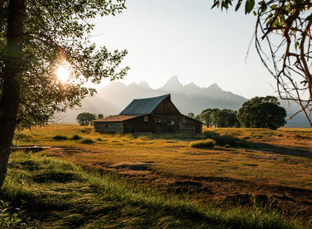 5 of the Coolest Roadside Photo Spots in Grand Teton National Park
