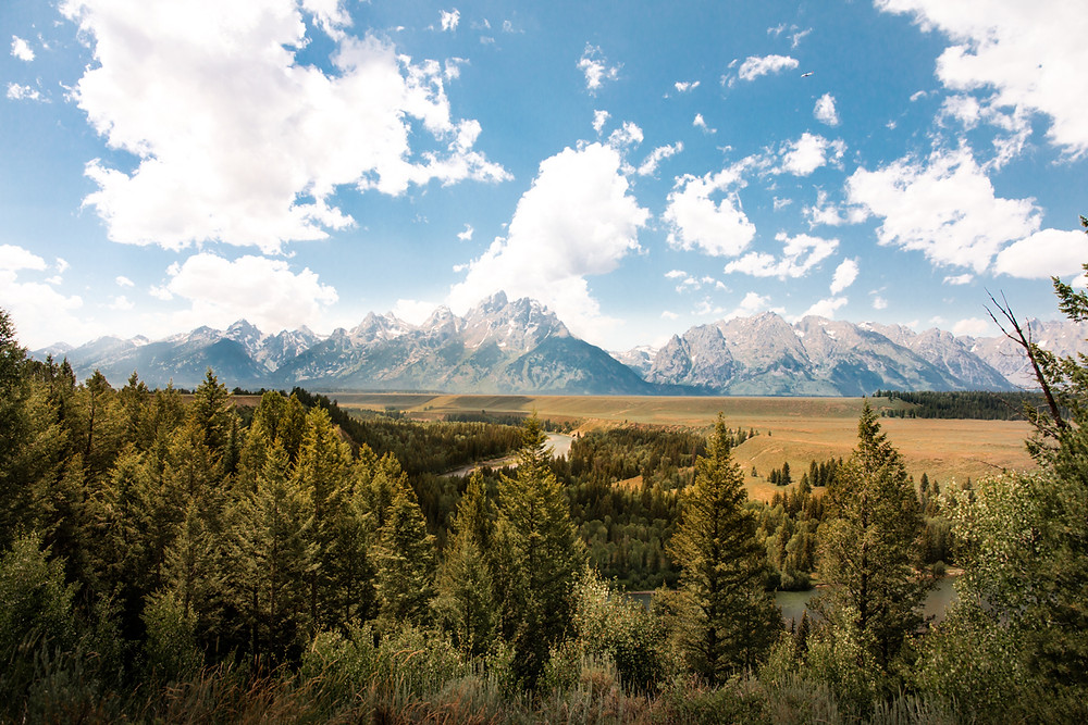 Grand Teton National Park, Tetons, Jackson Hole, Wyoming, Snake River Overlook