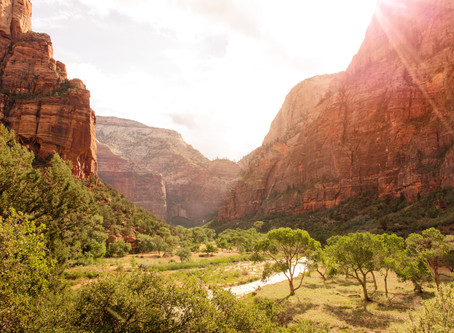 24 Hours in Zion National Park