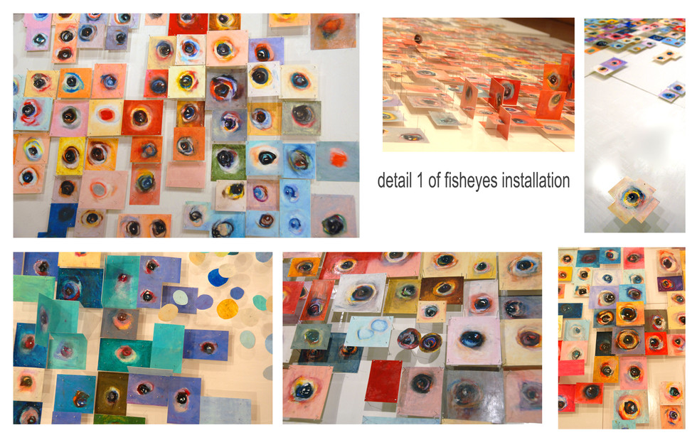 detail II of fisheye installation.jpg