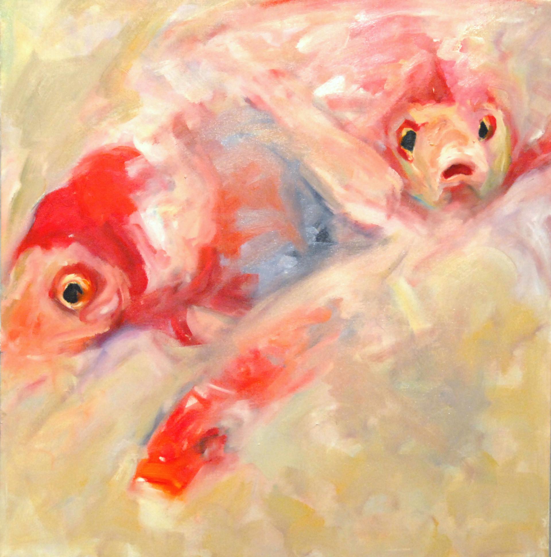 Goldfish III