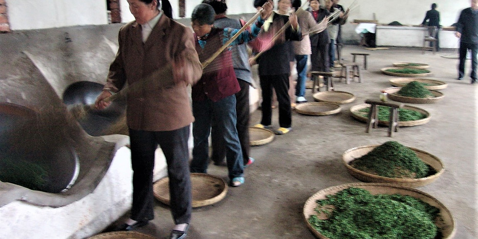 Tea Tasting...The Incredible Teas of China...3/7/20